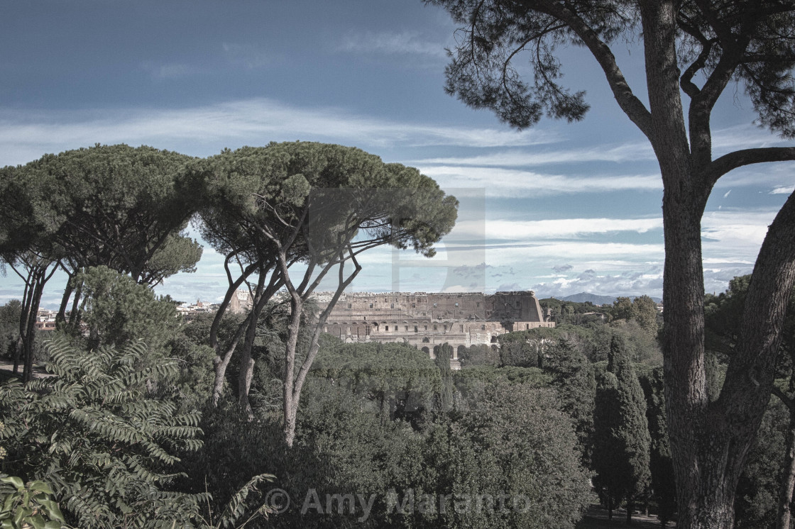 """""""View of the Colosseum"""" stock image"""