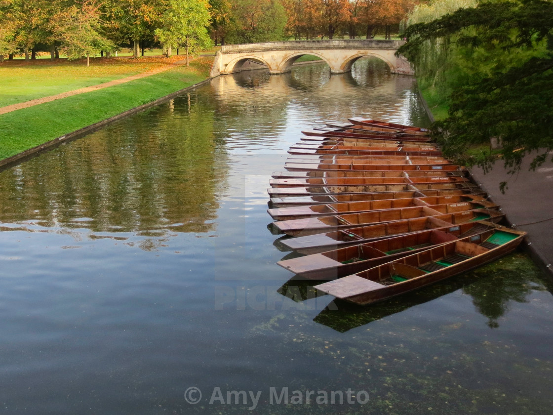 """Morning on the River Cam"" stock image"