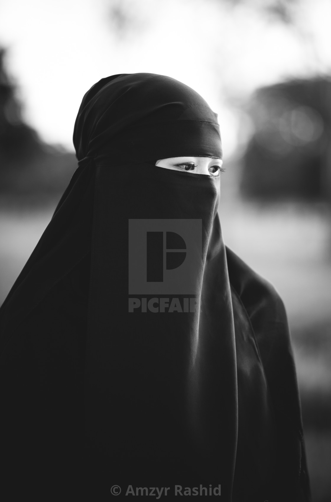 """Portrait of a Muslim Woman"" stock image"
