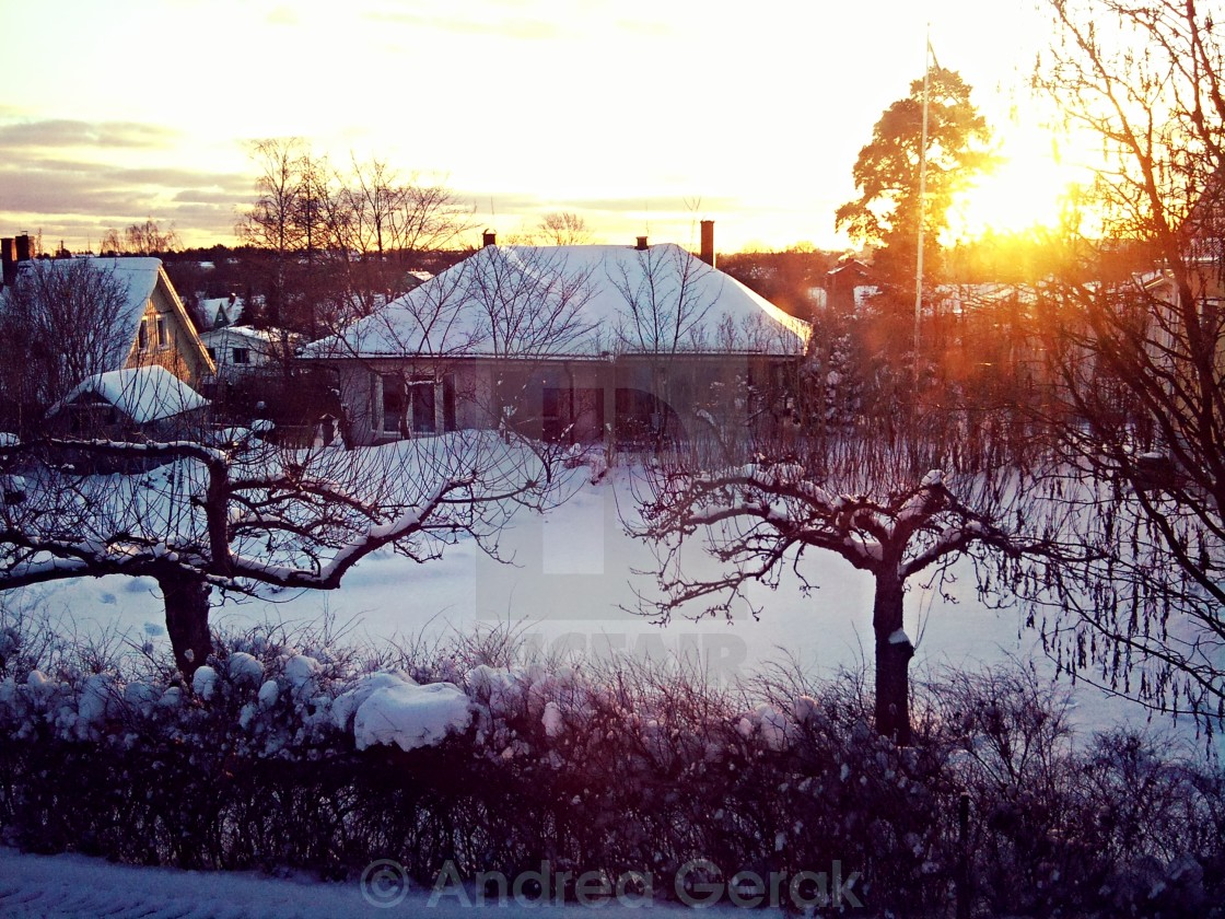 """Snowy sunset in Sweden"" stock image"