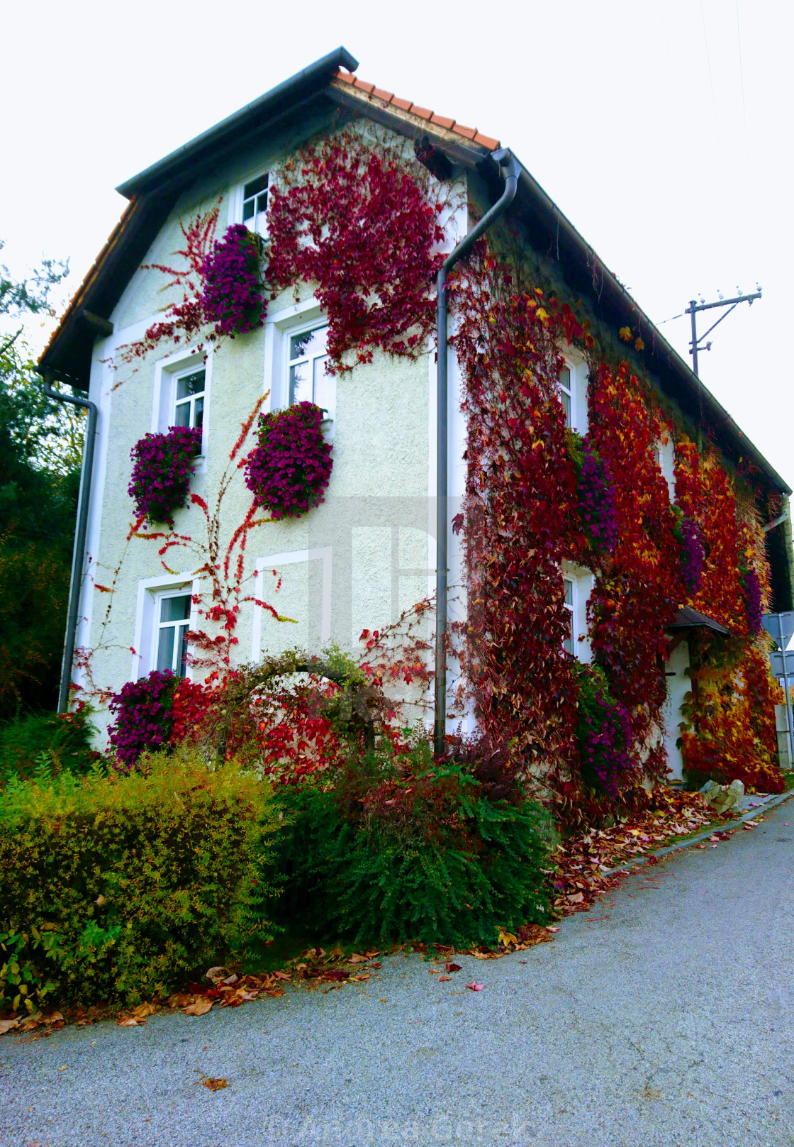 Autumn colors on a village house