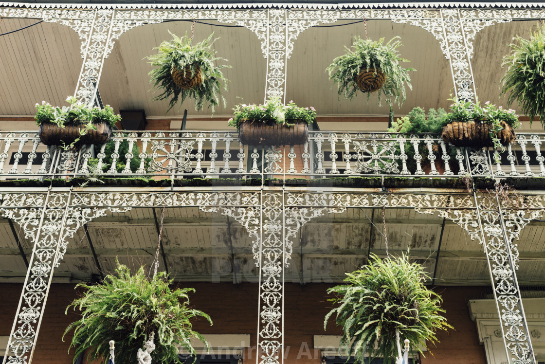 """""""New Orleans French Quarter buildings"""" stock image"""