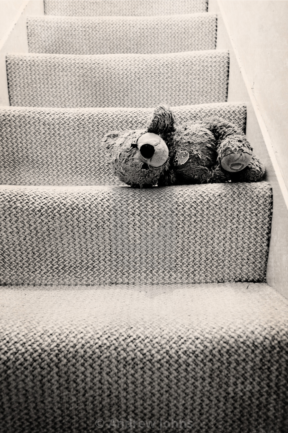 """Forgotten teddy"" stock image"