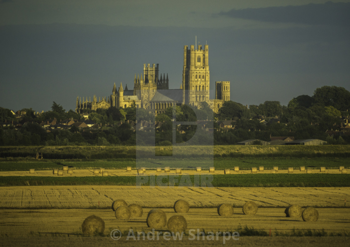 """Harvest time around Ely, 6th August 2017"" stock image"