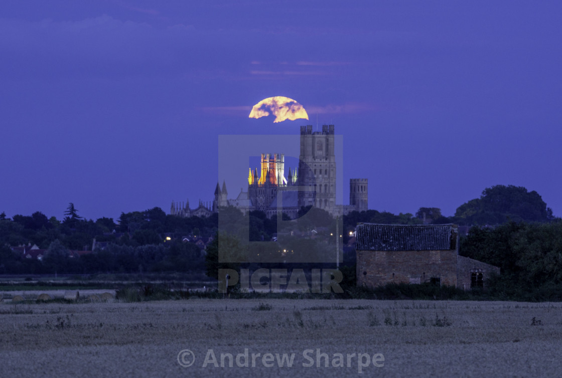 """""""Moonrise over Ely Cathedral, 15th August 2019"""" stock image"""