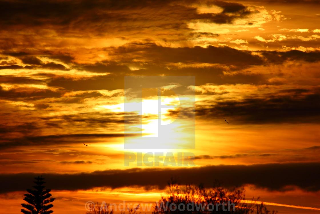 Golden Hour Sunrise - License, download or print for £12 40