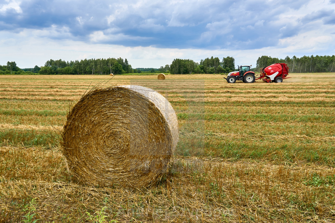 Biale, Poland - August 04, 2017: The tractor is working on