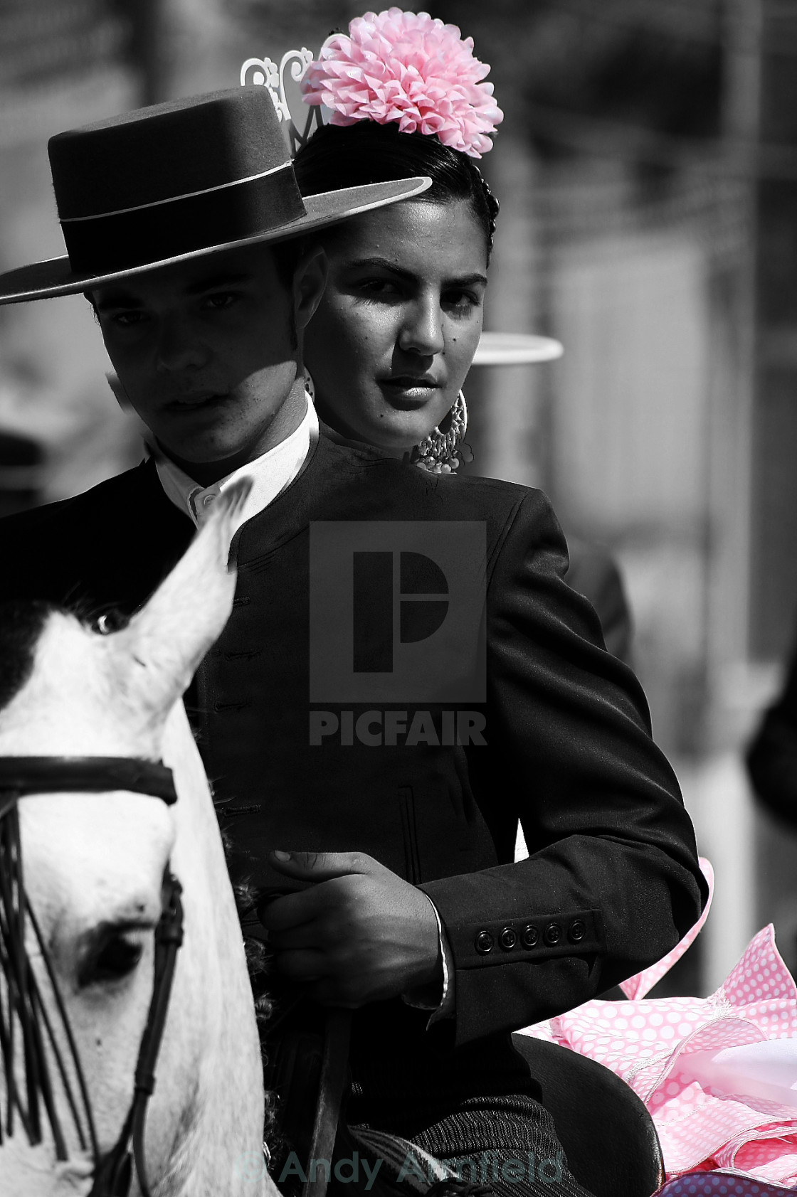 """""""Pink Senorita 2"""" stock image"""