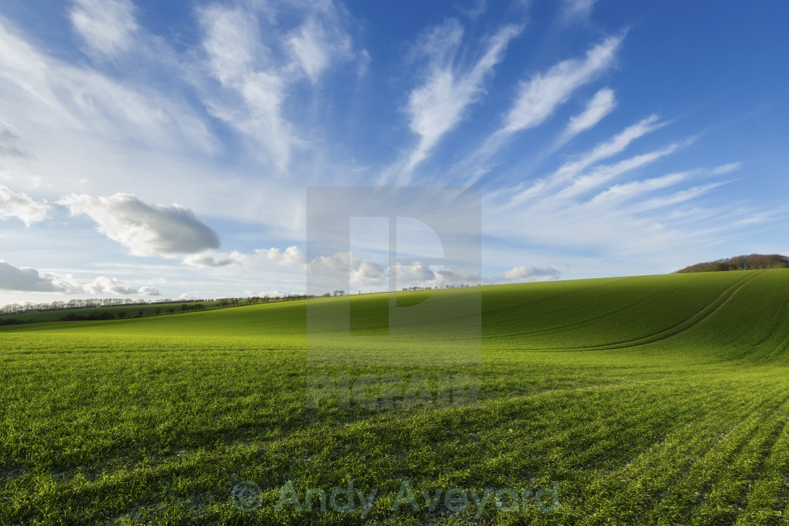 """""""Rolling Hills"""" stock image"""