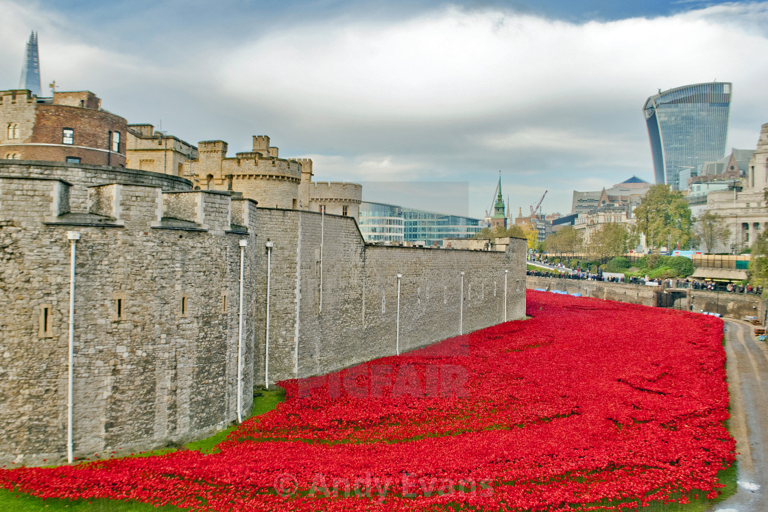 """Tower of London Poppy Poppies"" stock image"