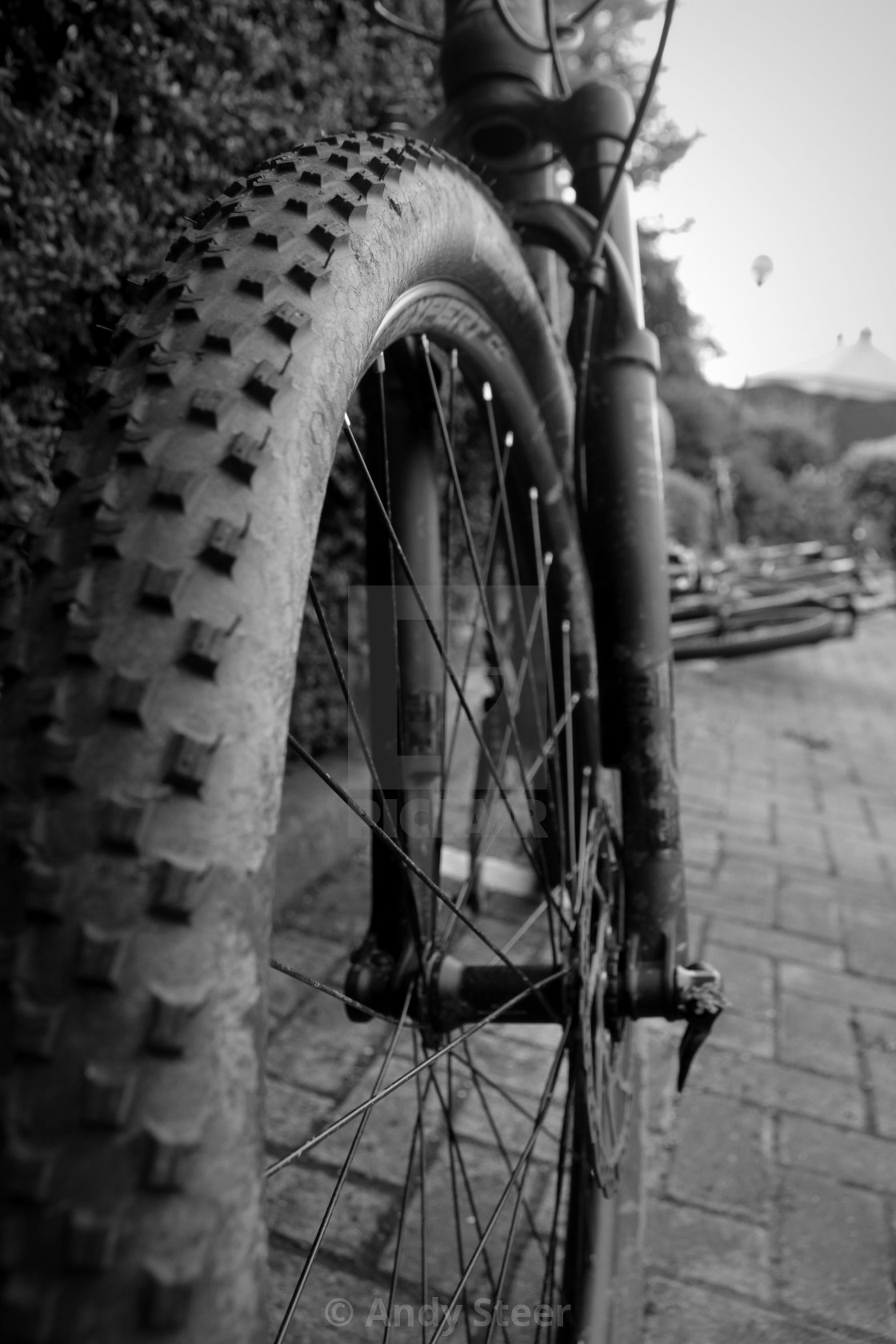 Black & White Mountain Bike Tyre
