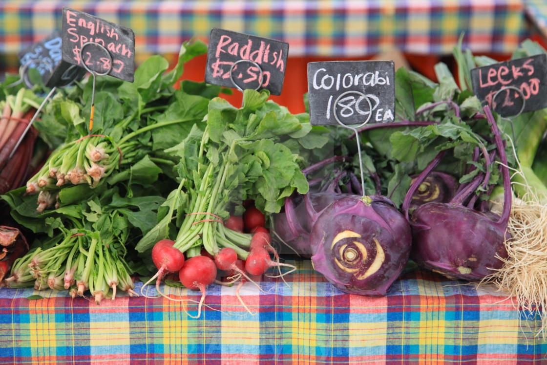 """Farm Fresh Vegetables"" stock image"