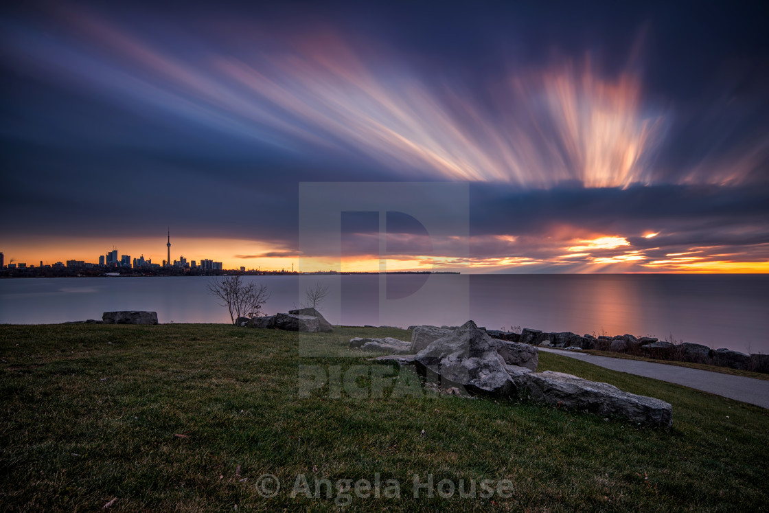 """""""Toronto skyline in the distance"""" stock image"""