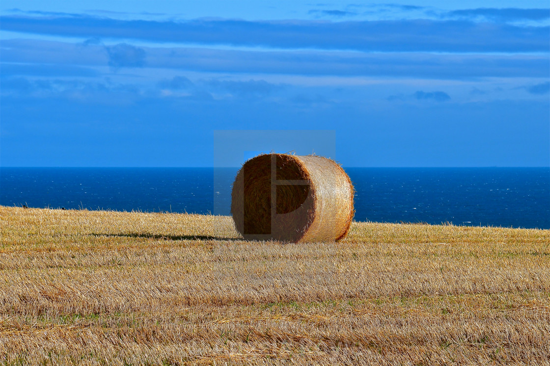 """Hay bails by the sea."" stock image"