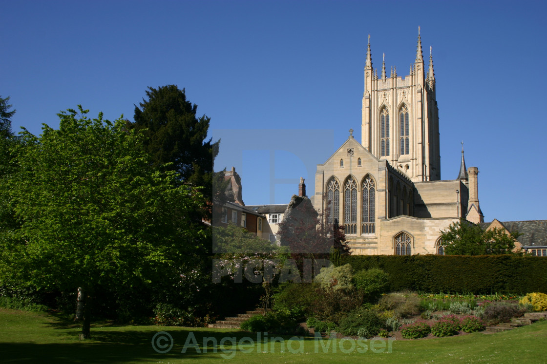 """""""St Edmundsbury Cathedral"""" stock image"""