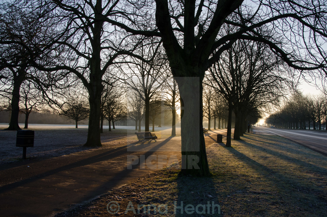 """Greenwich Park sunrise"" stock image"