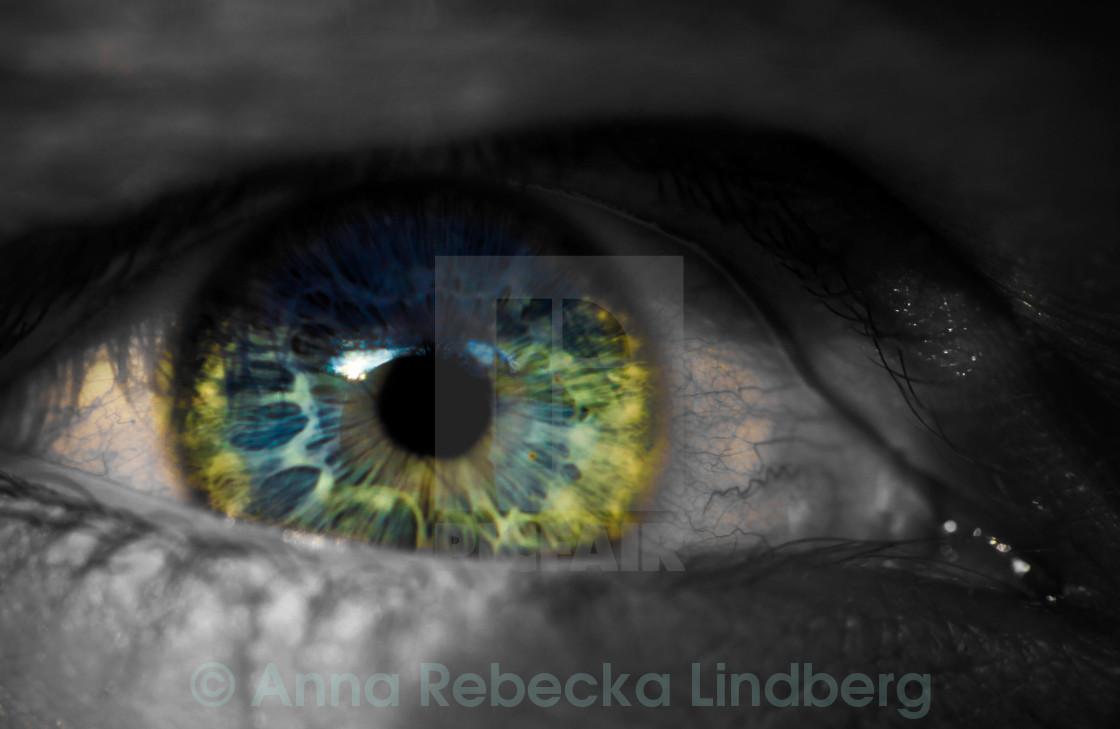 """""""The Eye"""" stock image"""