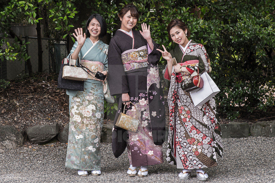 """Japanese beauty"" stock image"