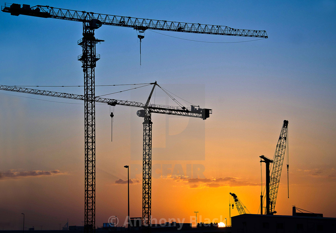 """Cranes at sunset"" stock image"