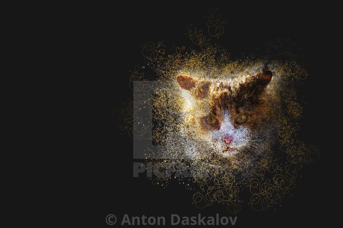"""""""Portrait of cat made with infinity lines"""" stock image"""