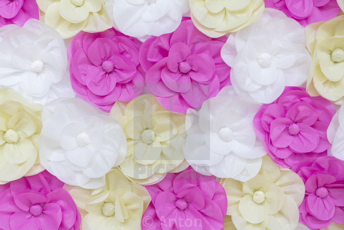 """Large colored paper flowers background"" stock image"