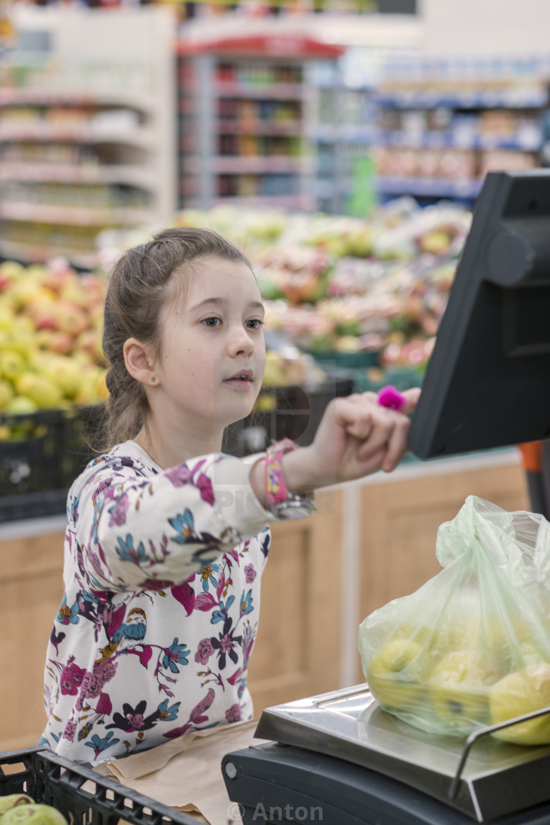 """""""A girl at a supermarket weighing apples. The concept of adult children"""" stock image"""
