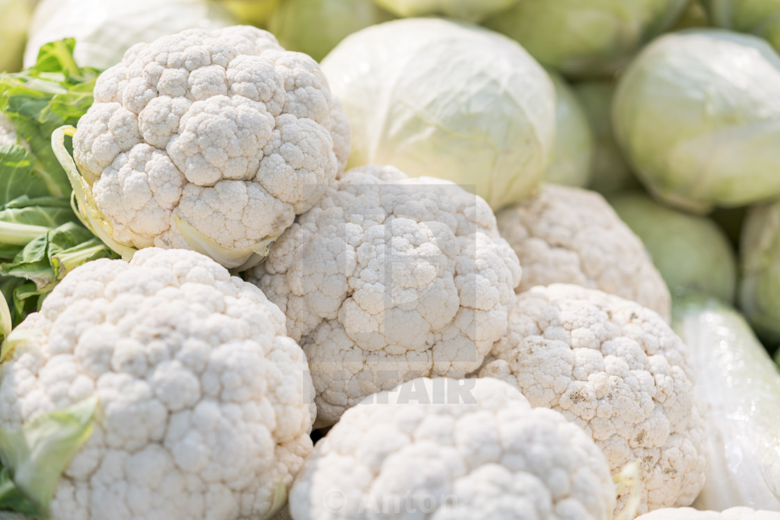 """Fresh ripe cauliflower for sale in a market. Group of cauliflower"" stock image"