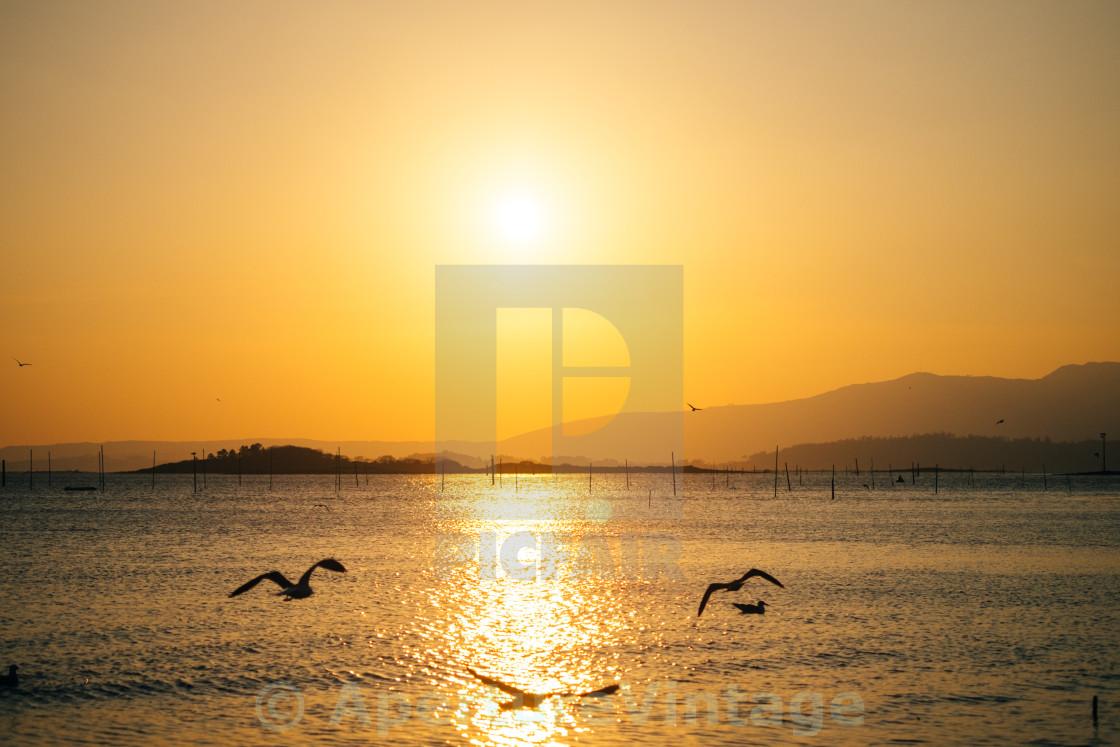 """""""warm sunset"""" stock image"""