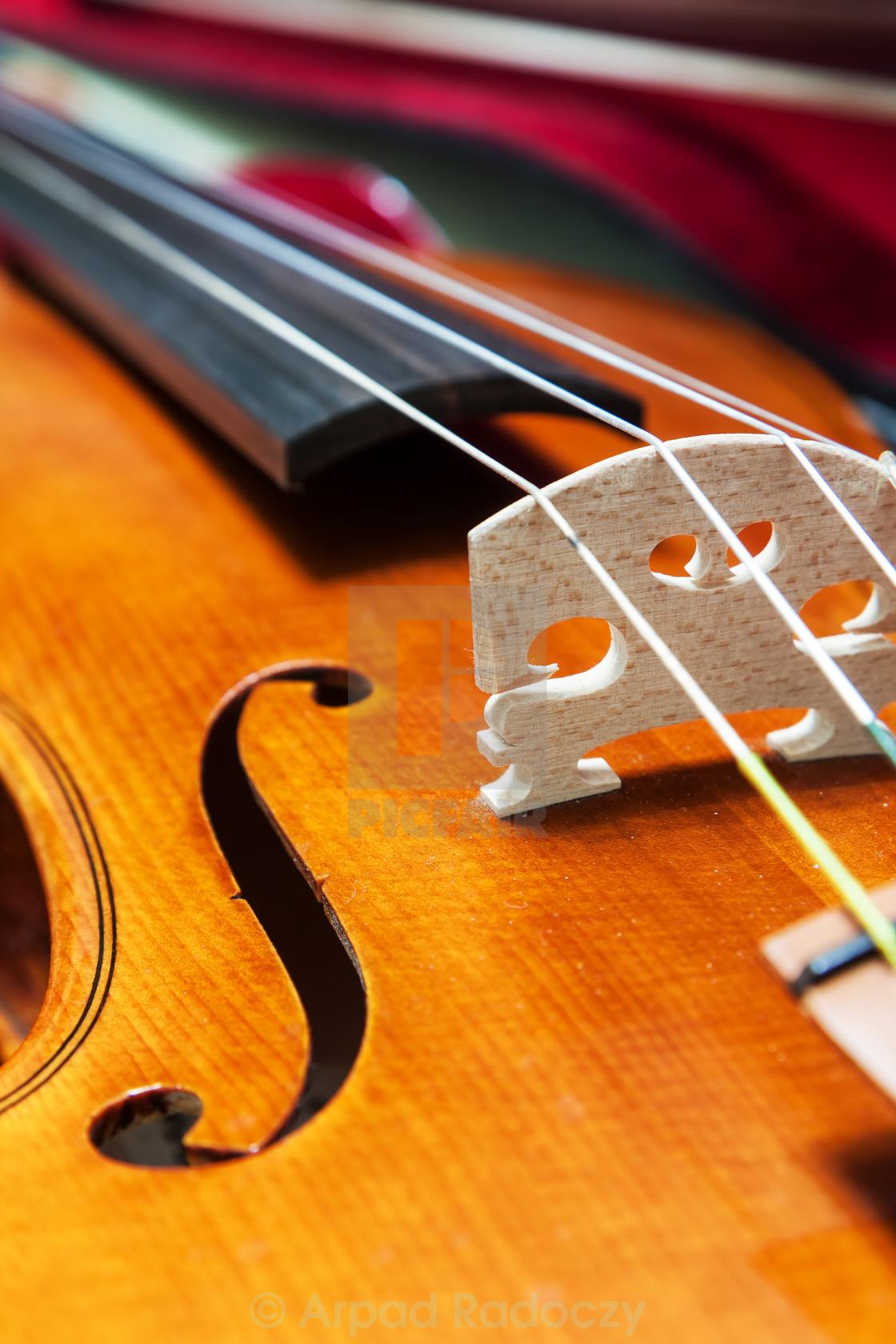 """Violin"" stock image"