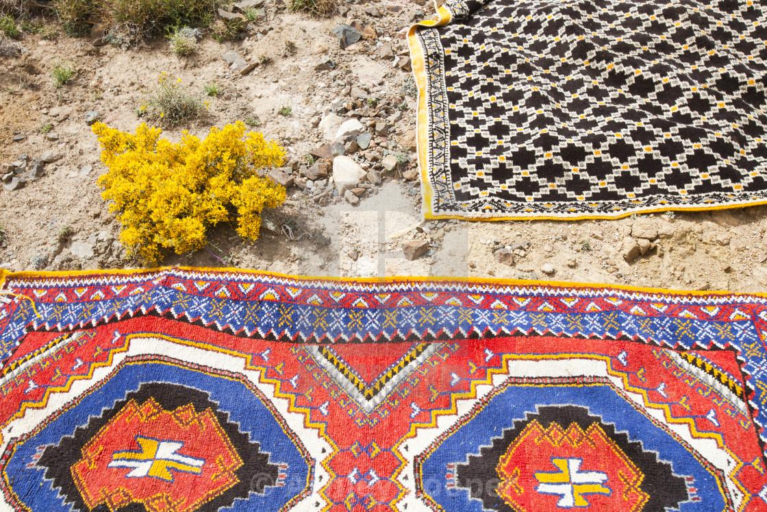 berber-carpets-in-the-wild