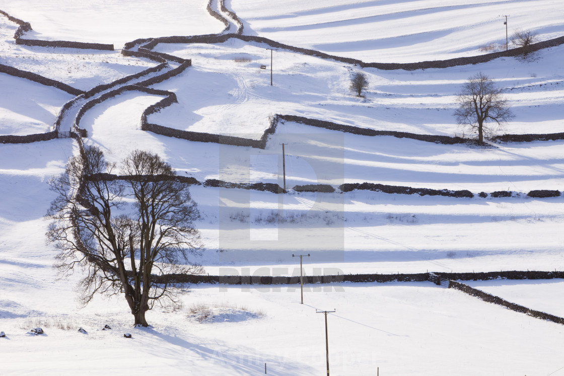 """The Yorkshire Dales near Settle, covered in snow, UK."" stock image"