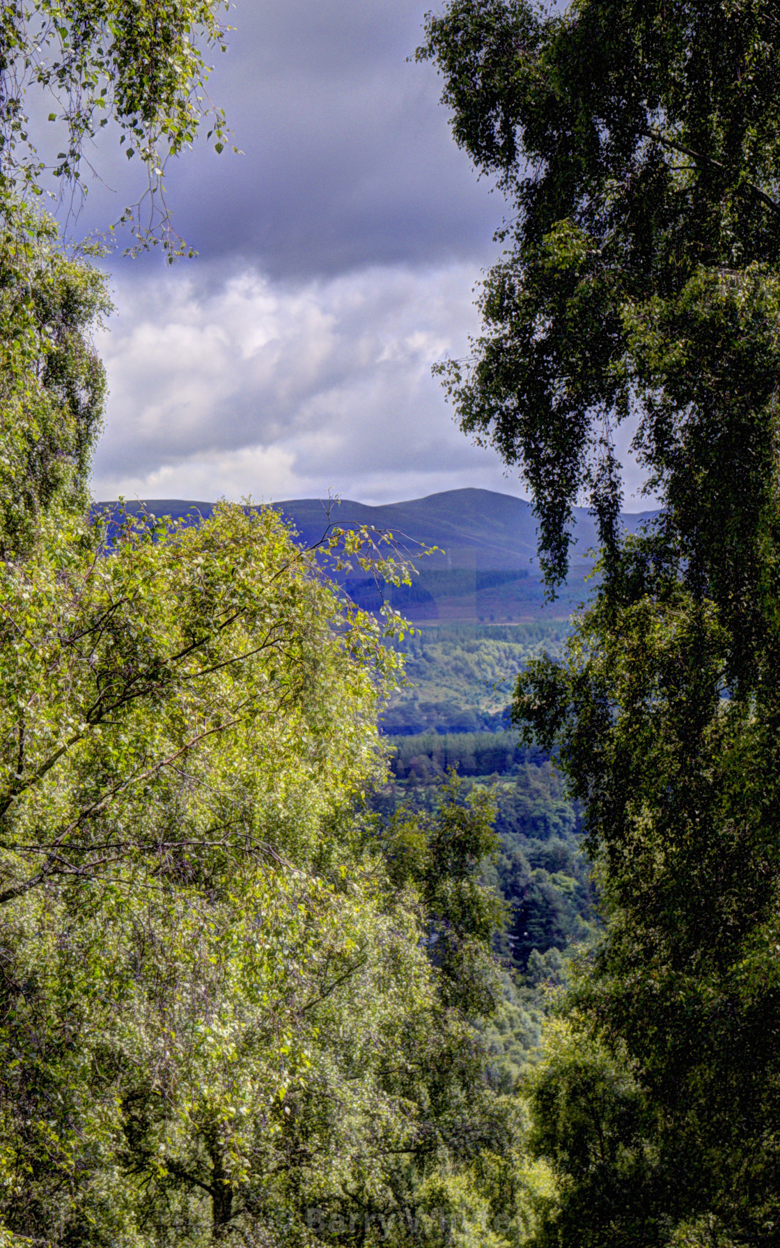 """Cairngorm View"" stock image"