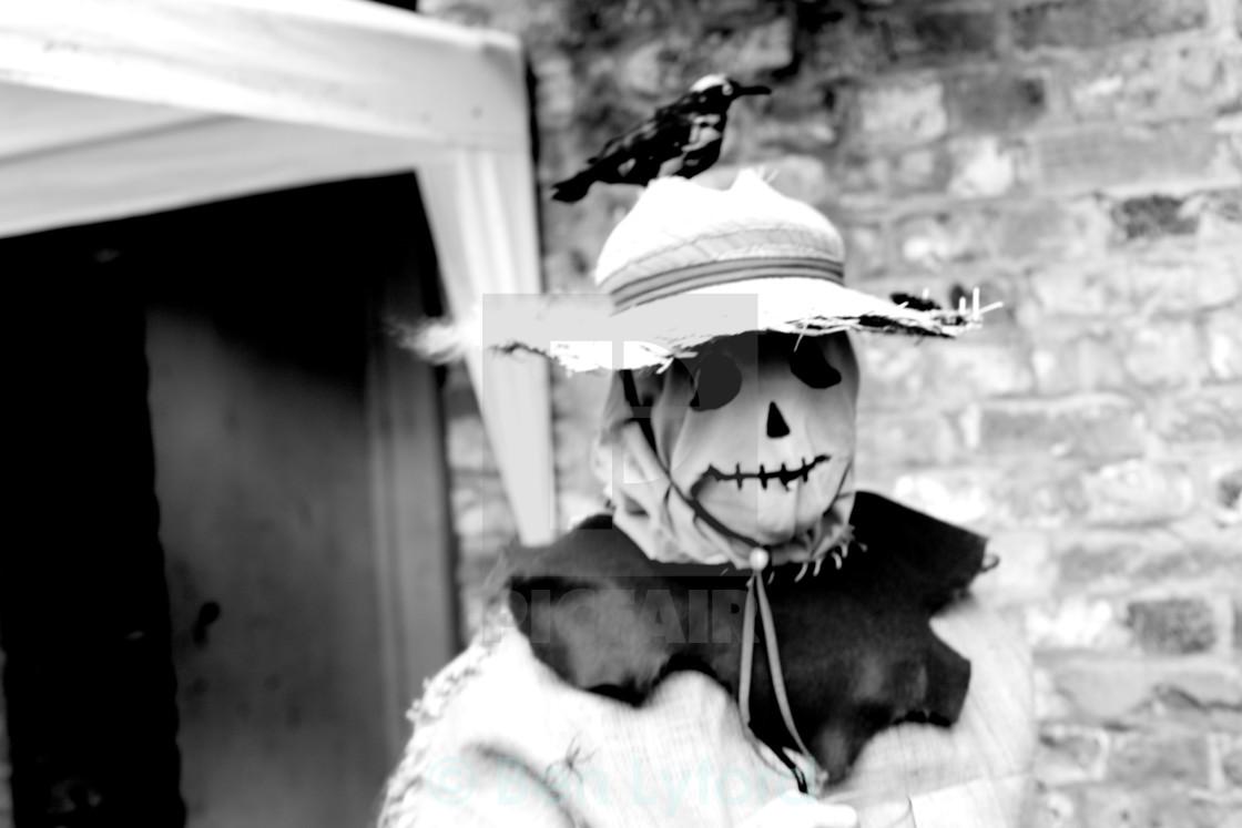 """Nightmare Scarecrow"" stock image"