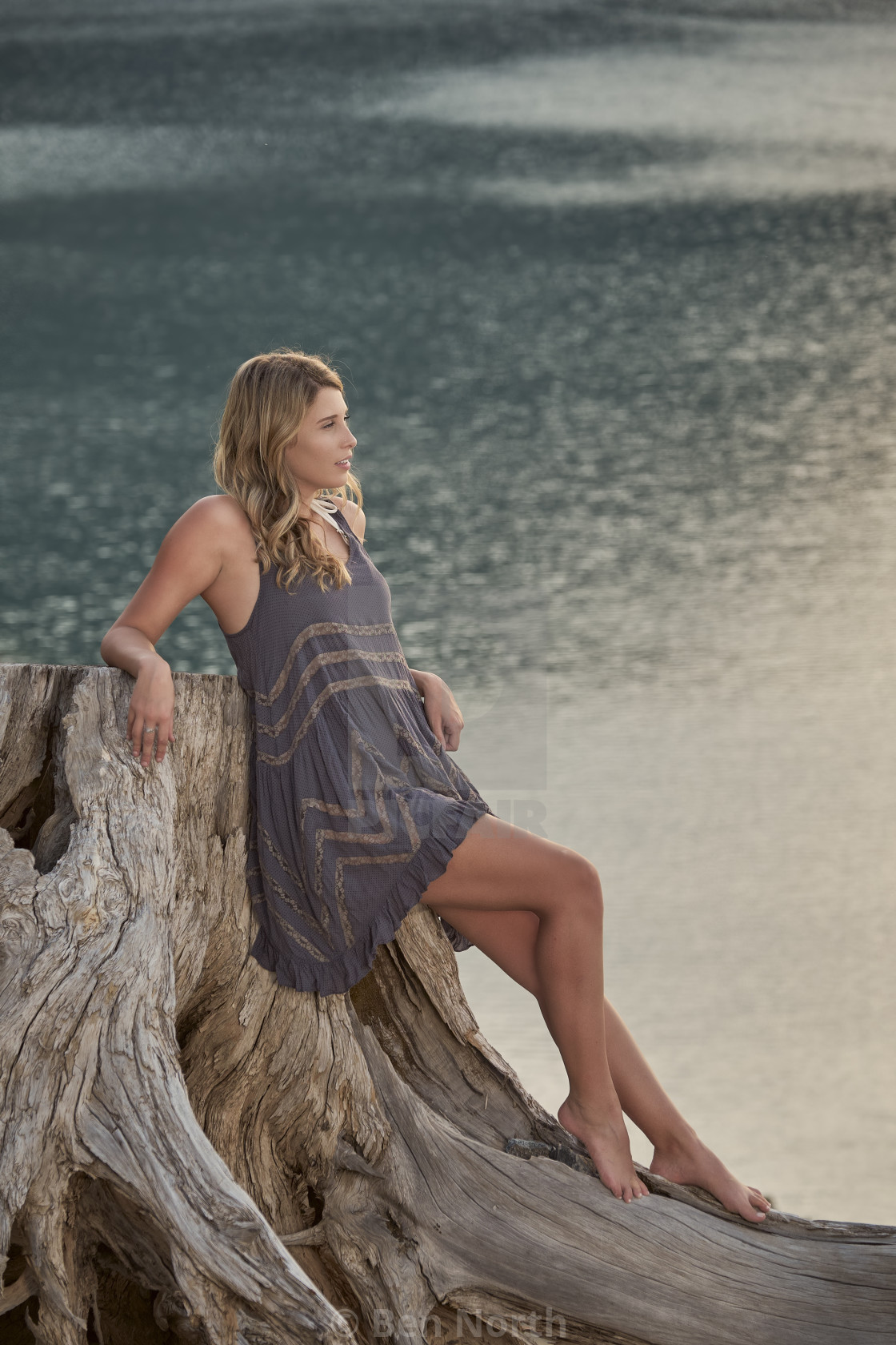 """""""A Young Barefoot Woman in a Slip Relaxing on a Tree Stump Next to a Lake"""" stock image"""