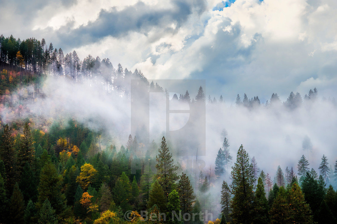 """""""Fall in the Sierra Nevadas 02"""" stock image"""