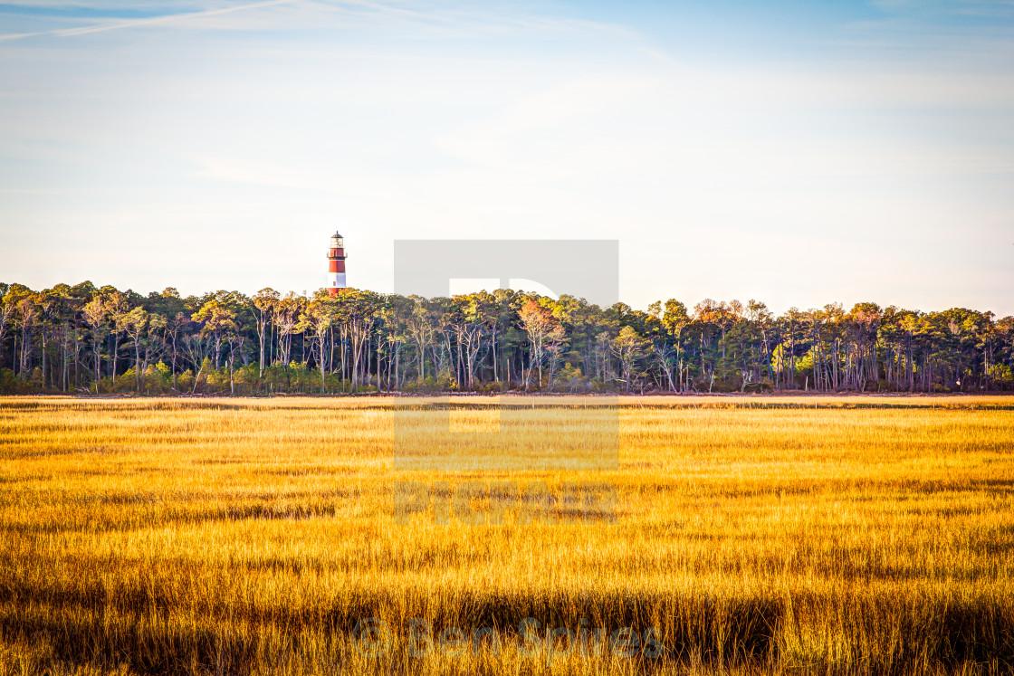 """Chincoteague Lighthouse"" stock image"