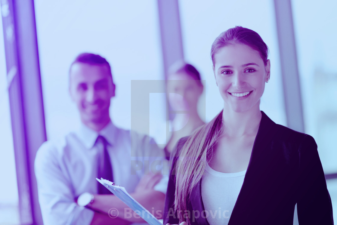 """business people group in a meeting at office"" stock image"