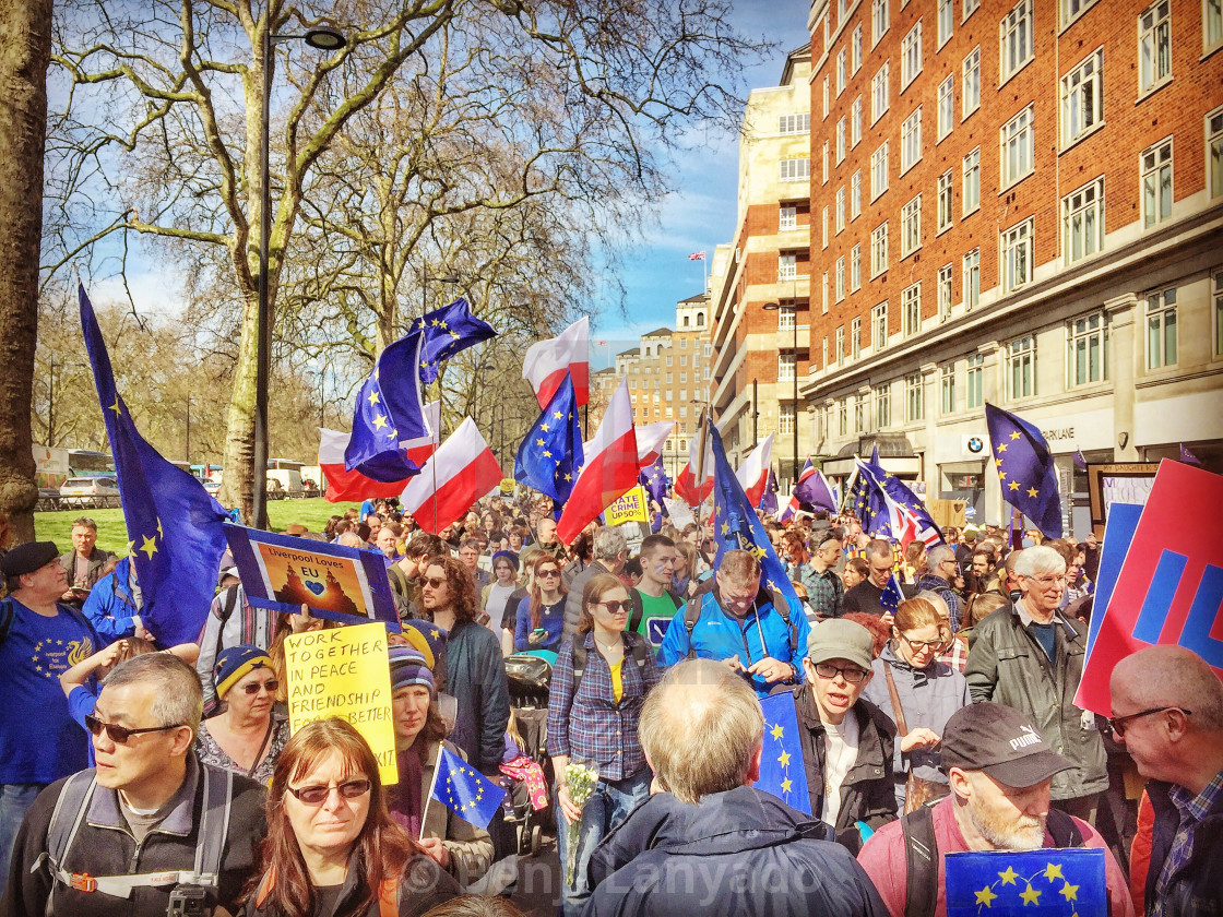"""Pro-Europe March"" stock image"