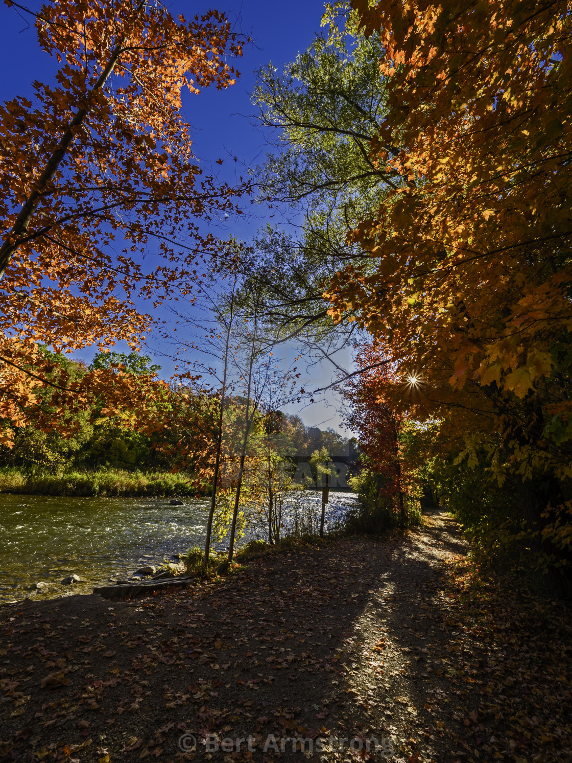 """Culham Trail in Fall 614"" stock image"