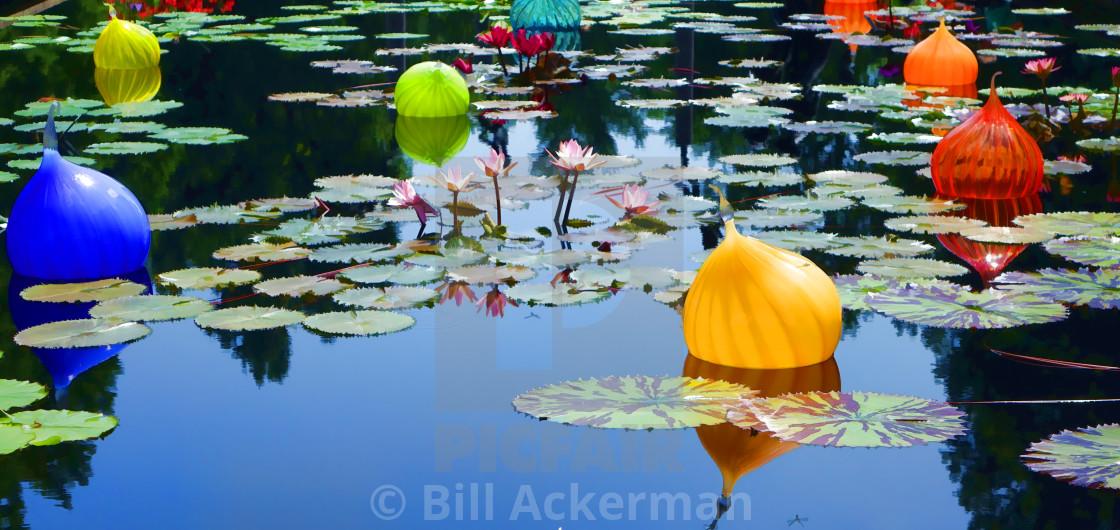 """""""Reflections, Missouri Botanical Gardens"""" stock image"""