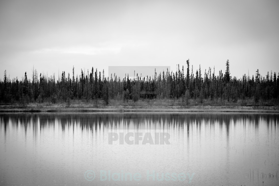 """""""Northern Reflections"""" stock image"""