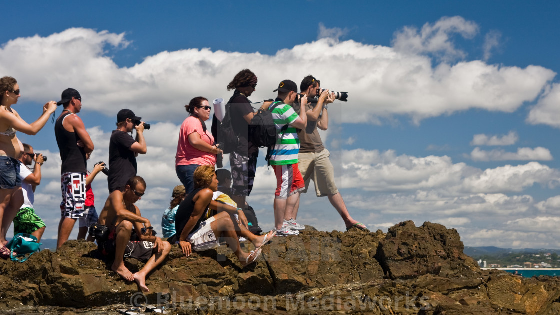 """""""Capturing the surfing action—Snapper #2"""" stock image"""