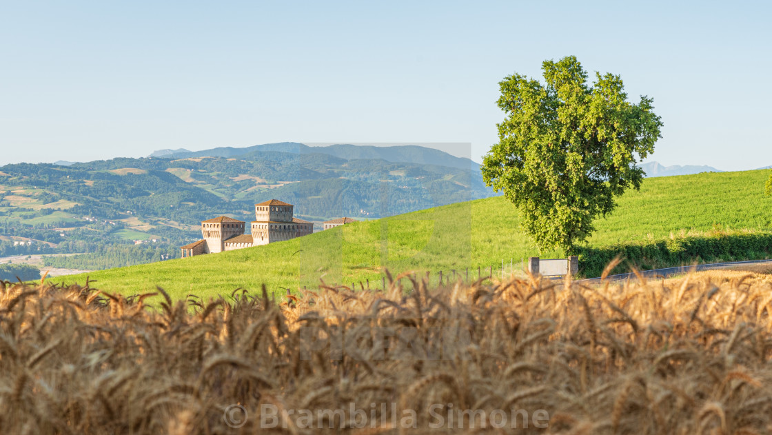 Emilian hills, ancient fortress and wheat field