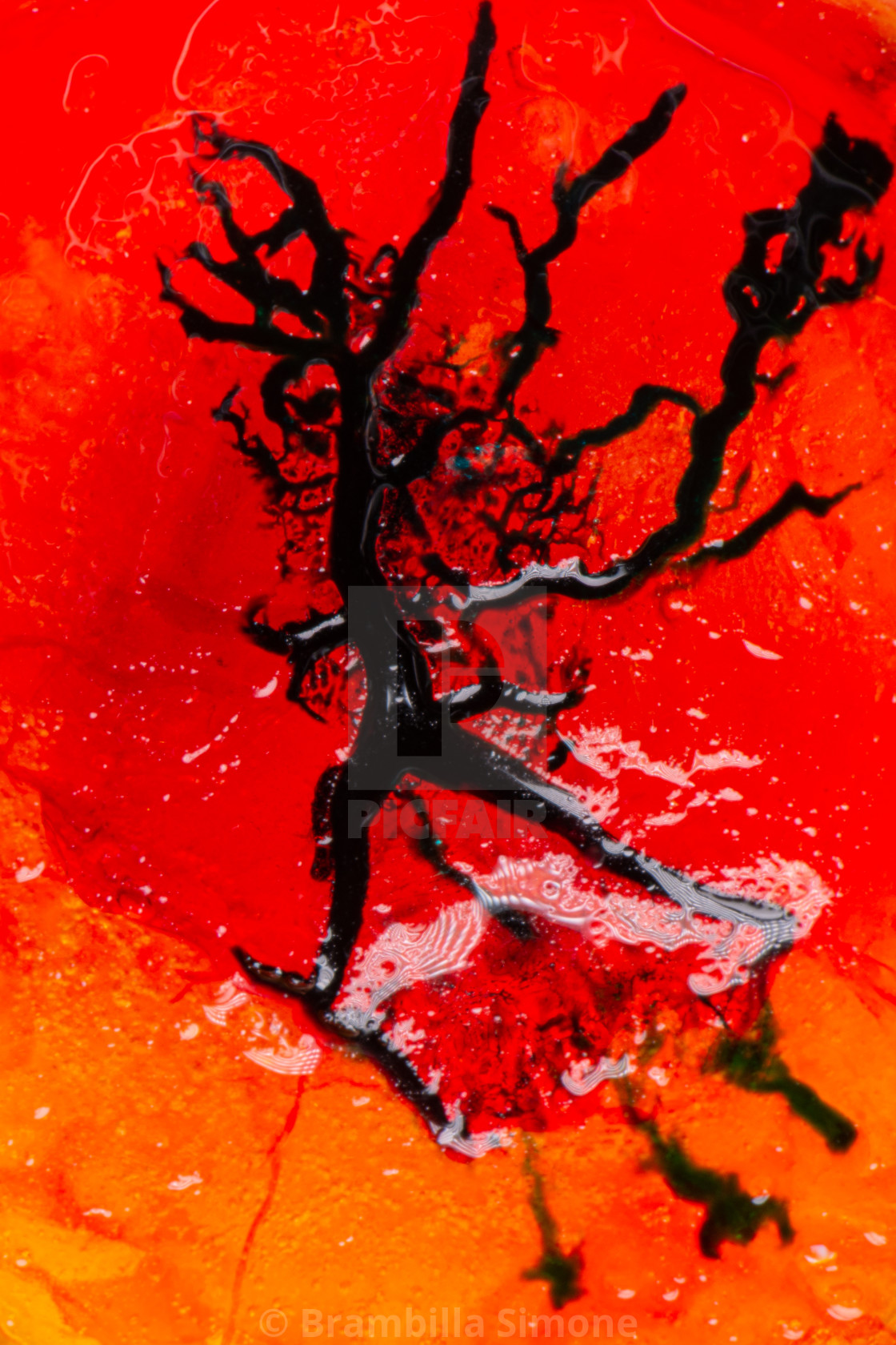 Image of blood-colored liquids mixed with other organic fluids