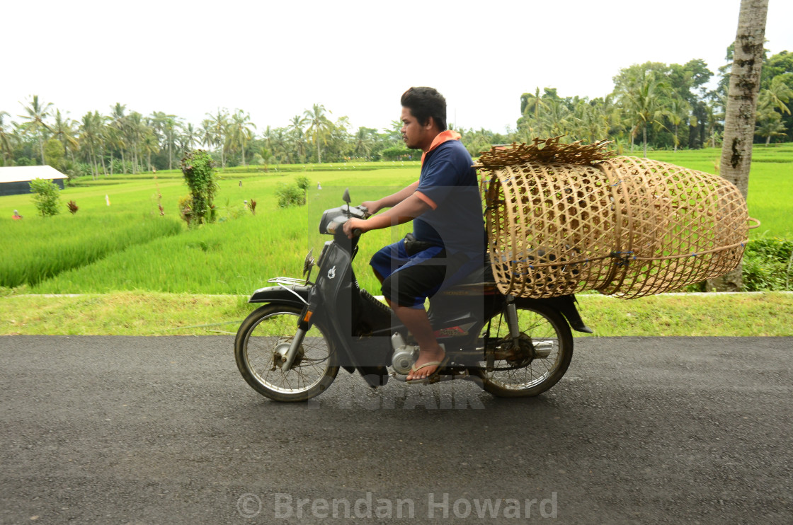 Moped rider in Bali