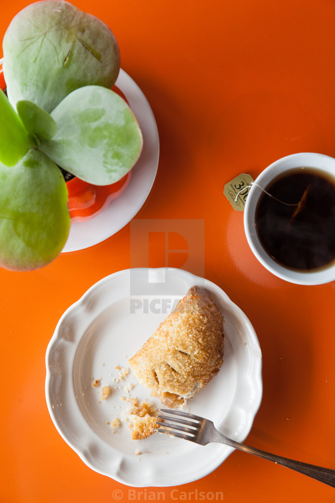 """Pie, tea & succulent"" stock image"