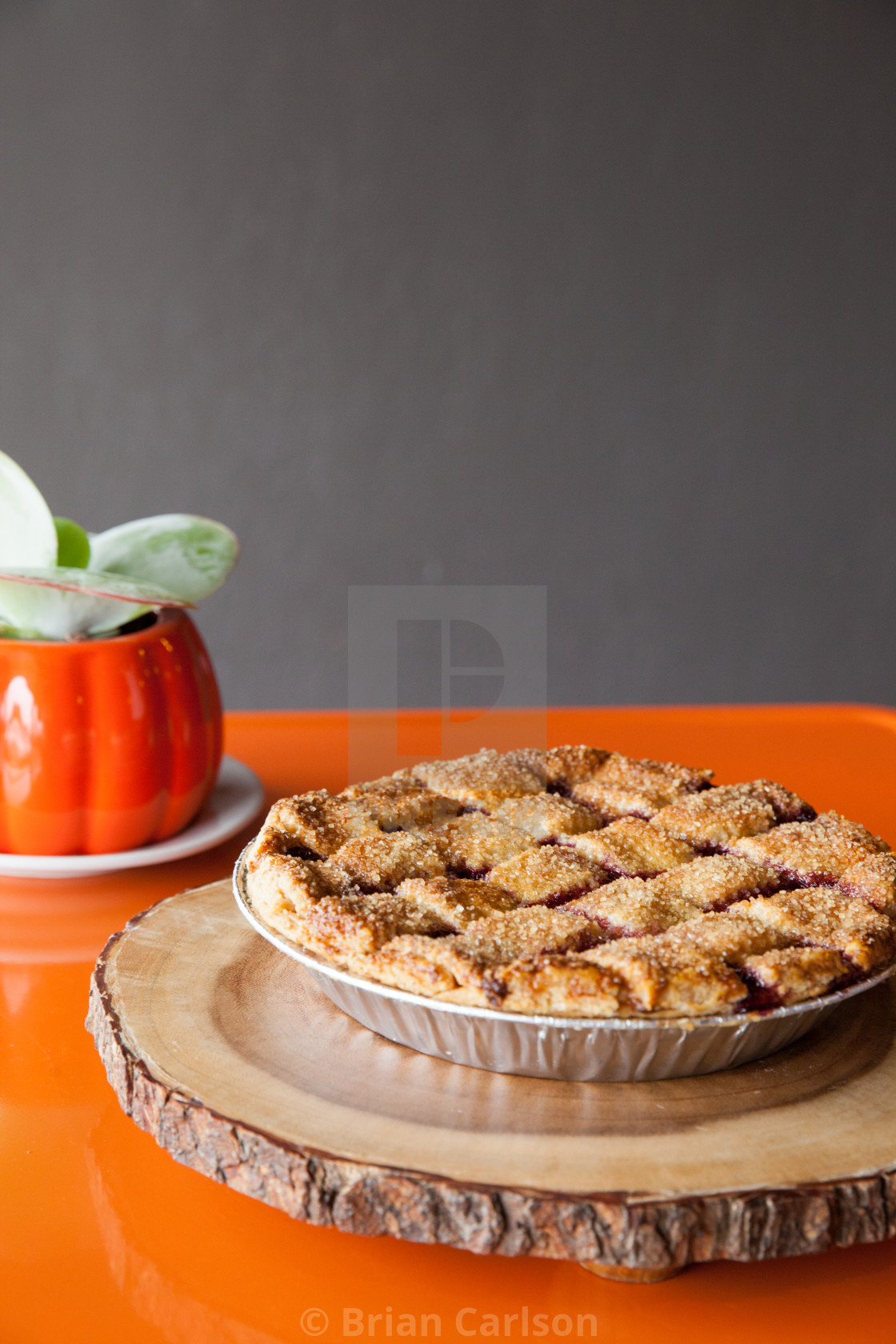 """""""pie and succulent"""" stock image"""