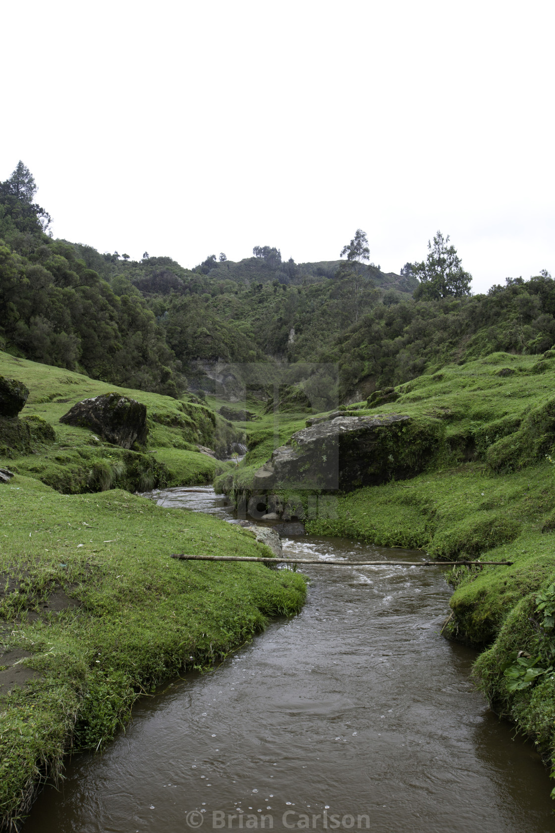 """Stream going through a valley in Ethiopia"" stock image"
