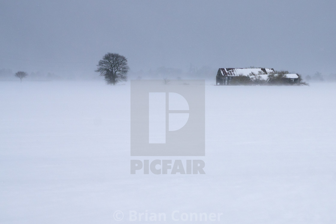 """Barn in a blizzard."" stock image"