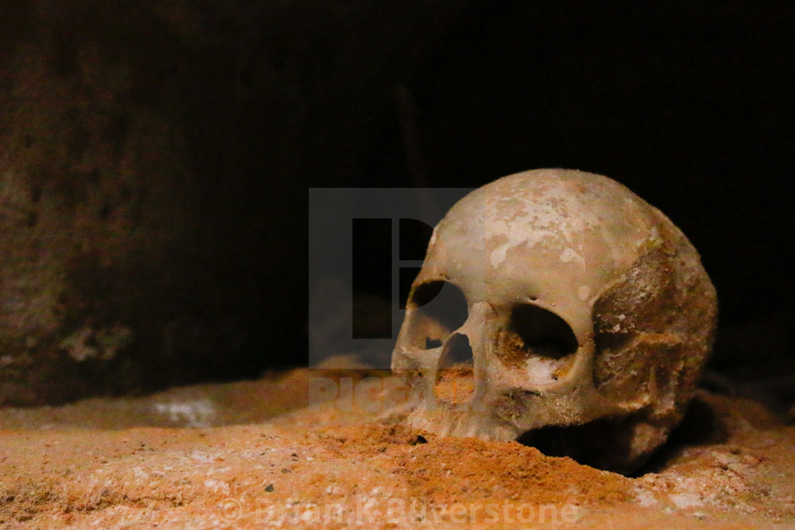 """Cartagenian Skull"" stock image"